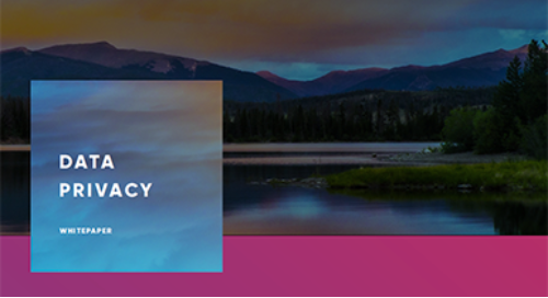Cloud Elements' Data Privacy White Paper