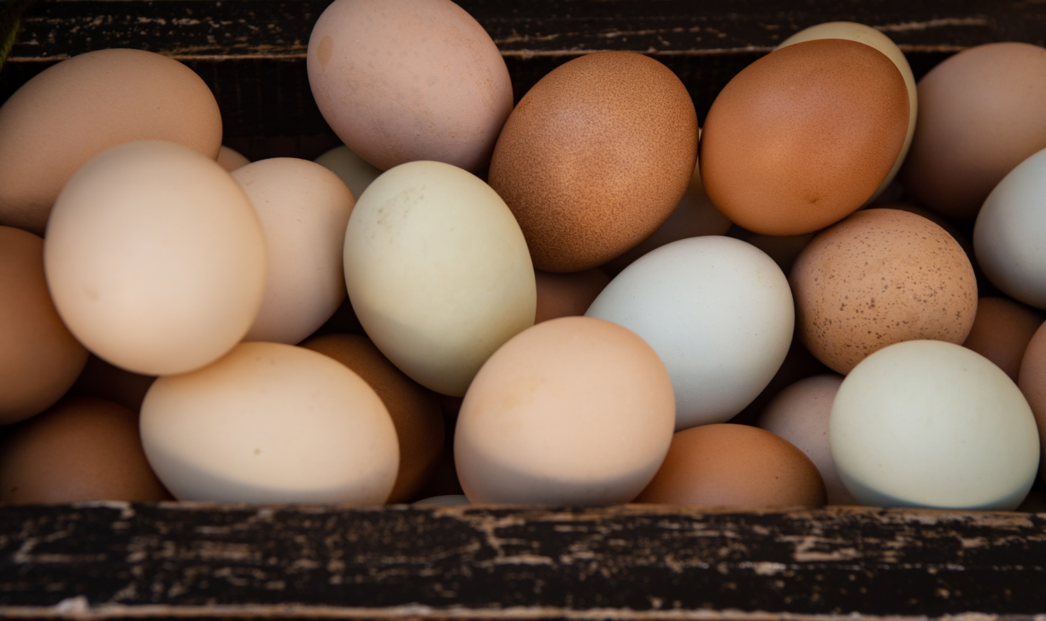 chicken eggs in a wood box