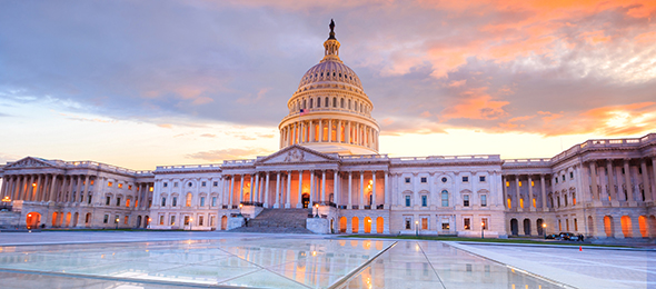C-Suite Survey: 5 Key Focus Areas in Light of the New Administration and Congress