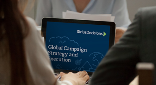 Global Campaign Strategy and Execution