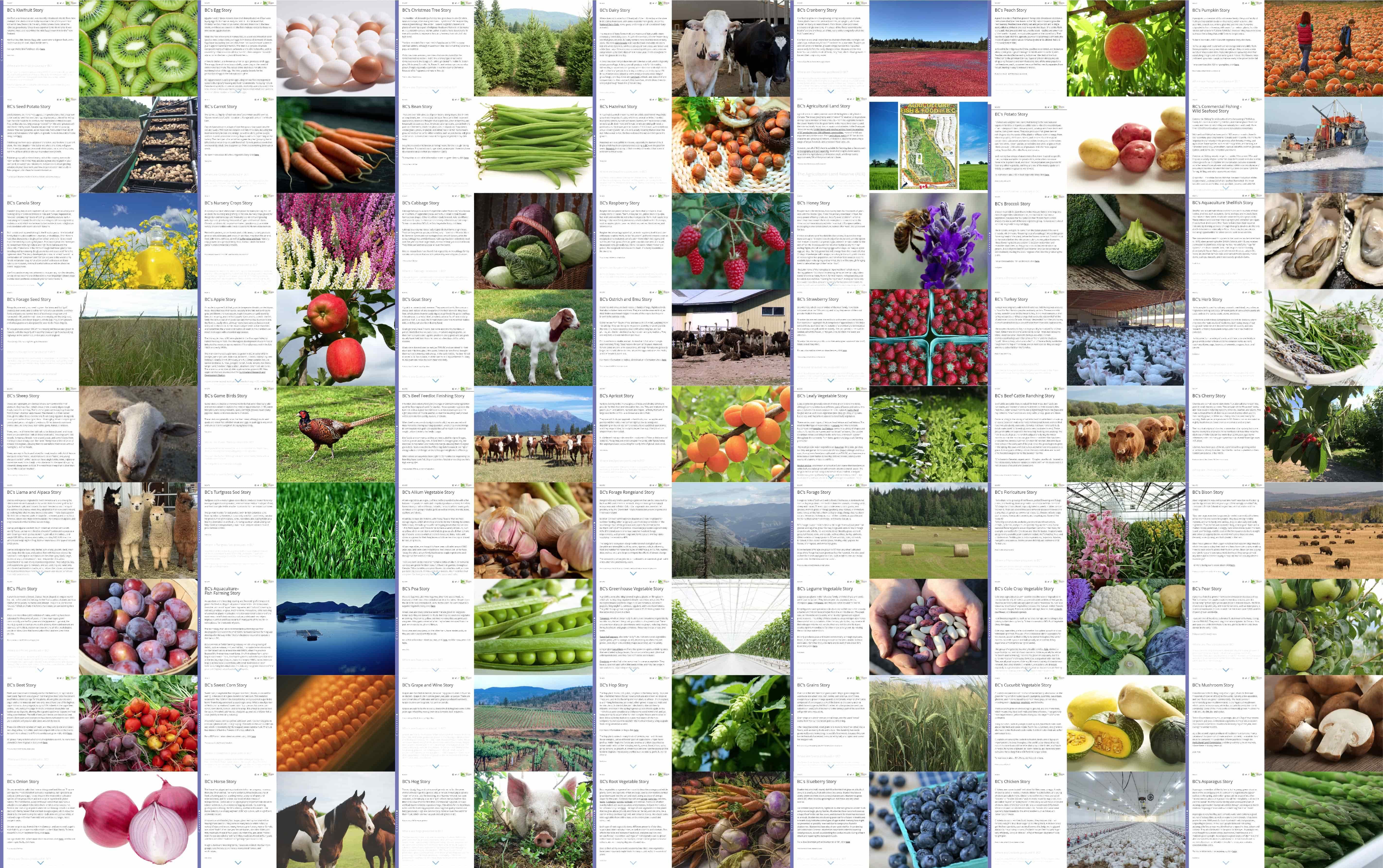 Collection de toutes les cartes récits créées pour chaque secteur agricole