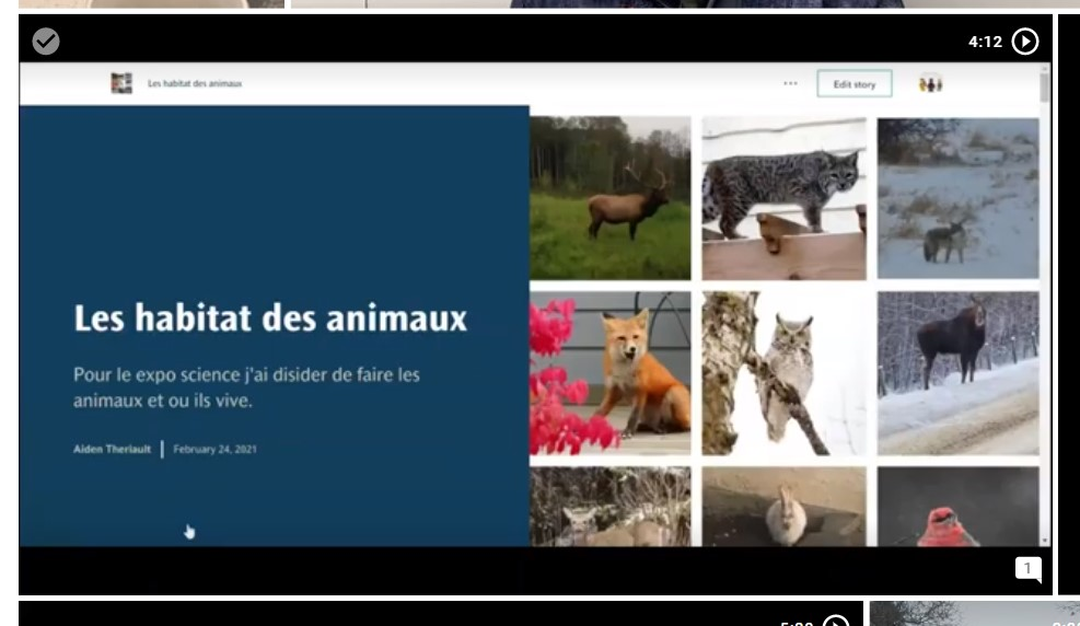Une carte récit présentant des animaux et du texte.