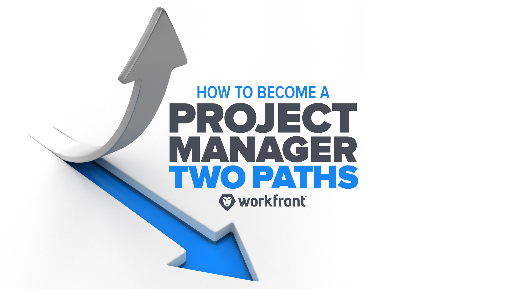How to become a project manager two paths xflitez Images