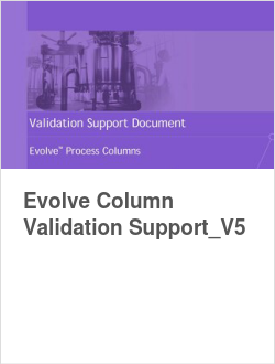 Evolve Column Validation Support_V5