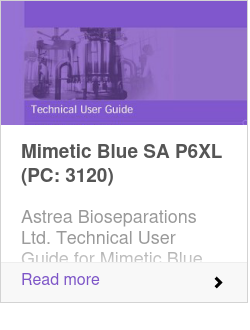 Mimetic Blue SA P6XL (PC: 3120)