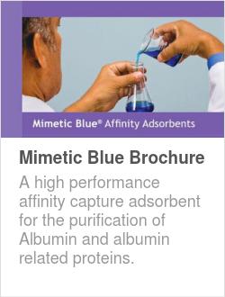 Mimetic Blue Brochure