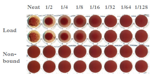 Modified Coombs agglutination assay of the Load and Non-bound samples from plasma using IsoClear B™. The load demonstrated a titre of 1/64 and the non-bound, a titre of 1/2. All samples were tested in duplicate