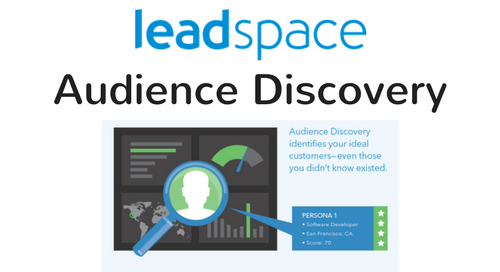 Leadspace Audience Discovery