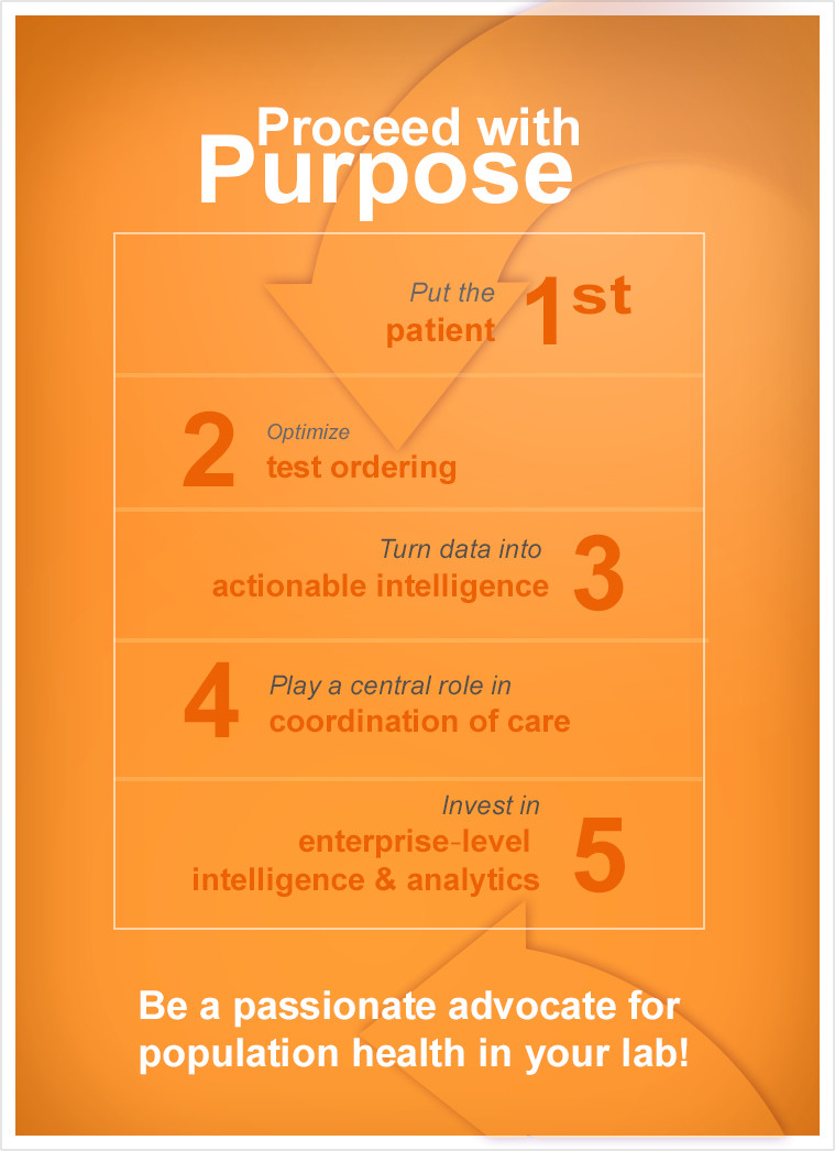 infographic summary - Proceed with purpose