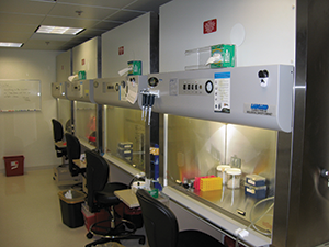 Biosafety Cabinet Introduction Webinar