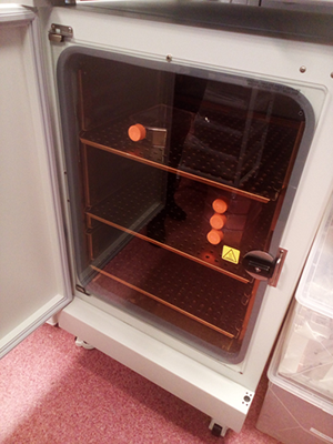 Care and Use of CO2 Incubator Copper Surfaces