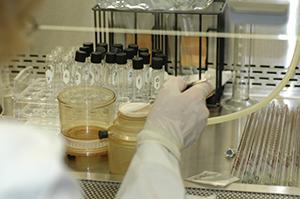 Class II Biosafety Cabinets Guide