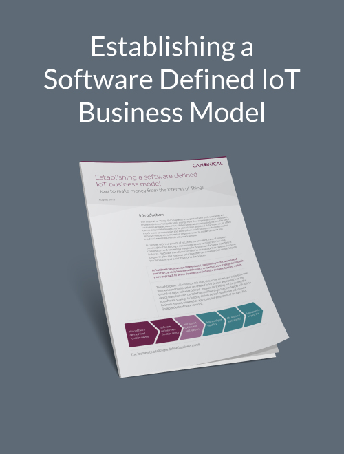 Establishing a Software-Defined IoT Business Model