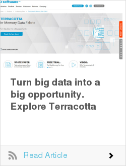 Turn big data into a big opportunity. Explore Terracotta