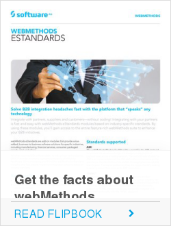 Get the facts about webMethods eStandards