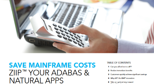 zIIP™ Adabas & Natural to save mainframe costs