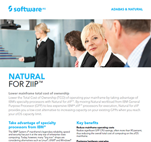 Facts about Natural for zIIP™