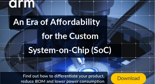 An Era of Affordability for the Custom System-on-Chip (SoC)
