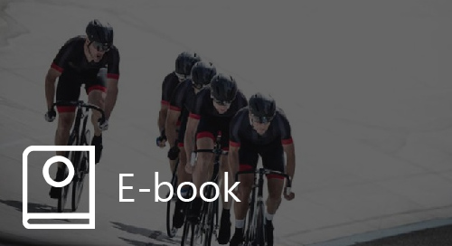 A Framework to Drive Sales Team Performance