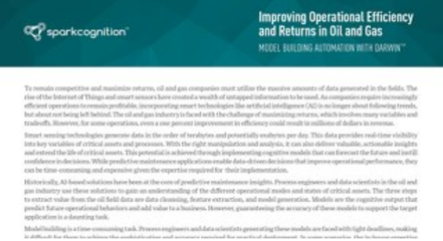 Improving Operational Efficiency and Returns in Oil and Gas