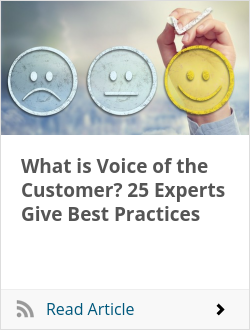What is Voice of the Customer? 25 Experts Give Best Practices
