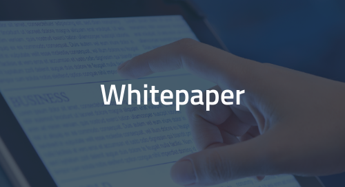Whitepaper: Diversity, Inclusion and Meaningful Participation