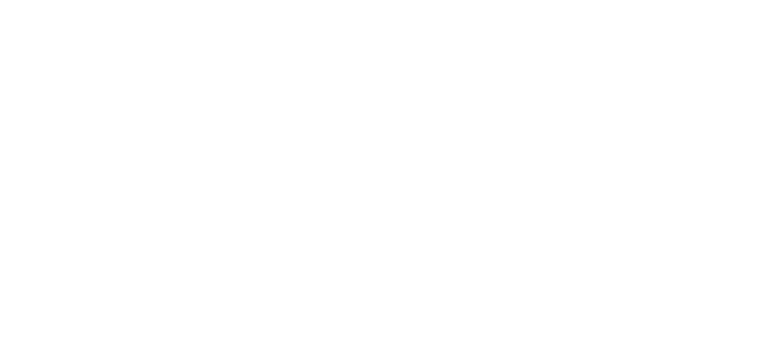 Western Computer logo