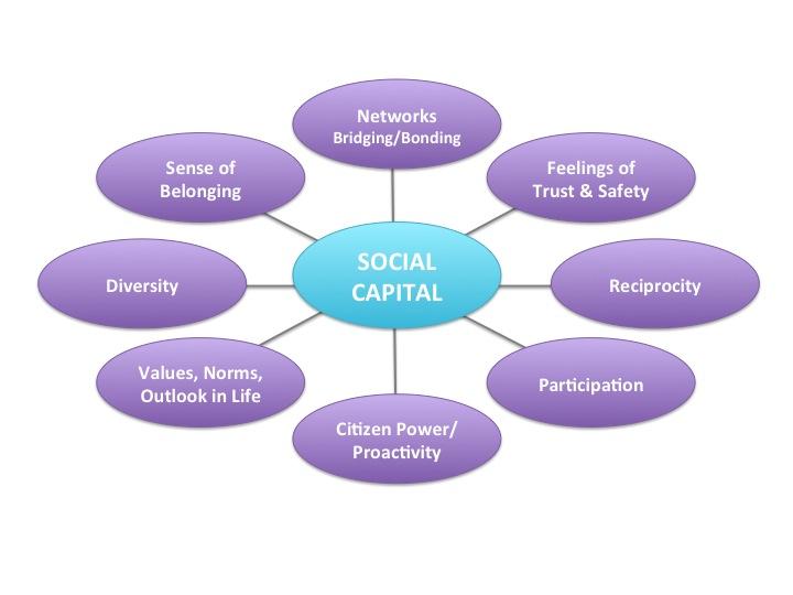 Social Capital Web