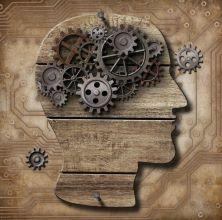 Brain as a machine