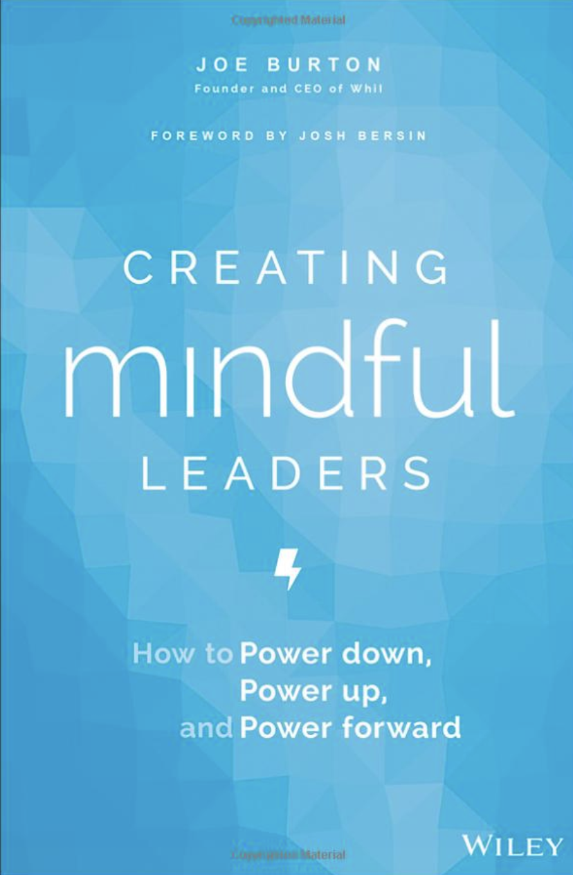 """Creating Mindful Leaders"" book cover"