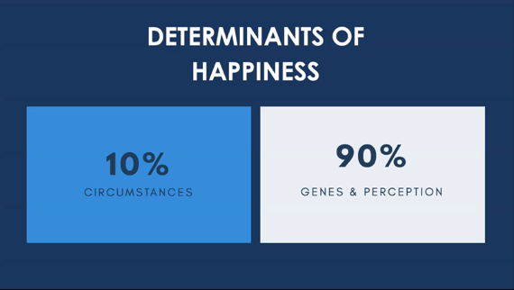 Determinants of happiness