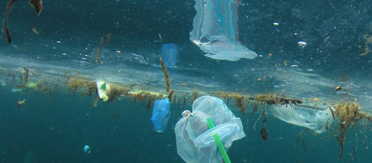 Destructive plastic materials drift in the water.