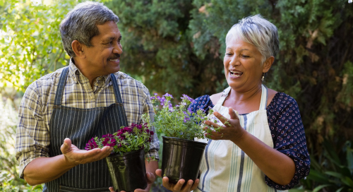 Elderly couple holding plants and smiling.