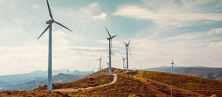 A panoramic view of a windmill farm.