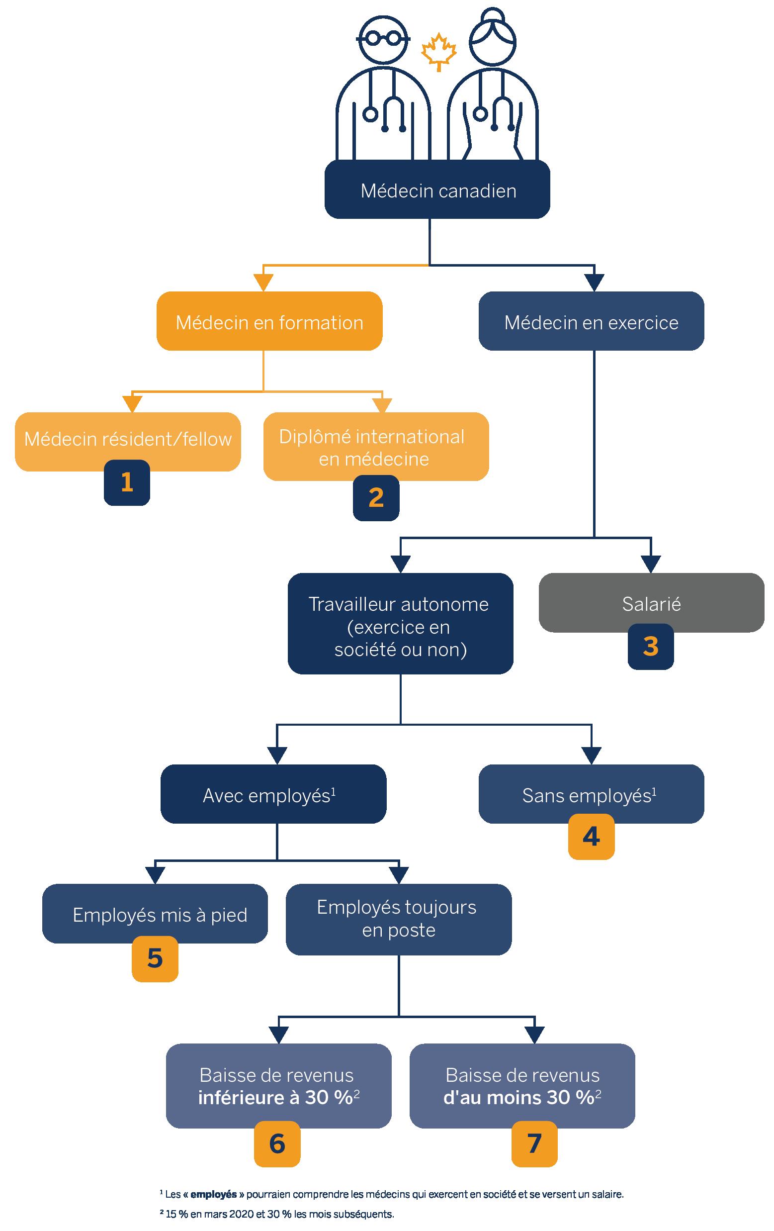 Le schéma illustre les différentes situations dans lesquelles les médecins peuvent se trouver. Il y a d'abord deux branches, celle du médecin en formation et celle du médecin en exercice. La branche du médecin en exercice se divise ensuite en deux autres branches, celle du travailleur autonome (exercice en société ou non) et celle du salarié, et ainsi de suite.