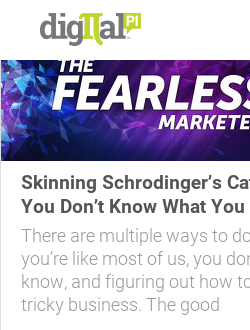 Skinning Schrodinger's Cat: Fearless Marketing When You Don't Know What You Don't Know