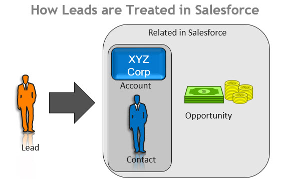 Salesforce leads and Conctas