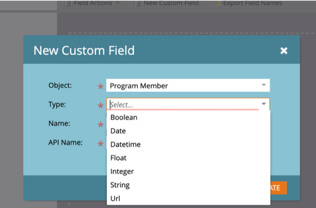 Marketo engage custom program field creation