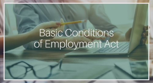 Basic Conditions of Employment Act - Summary