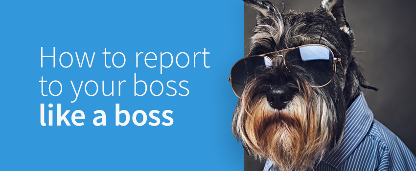 How to report to your boss like a boss to improve PR reporting and more