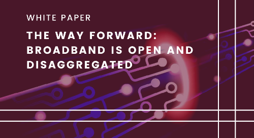 The Way Forward: Broadband is Open and Disaggregated