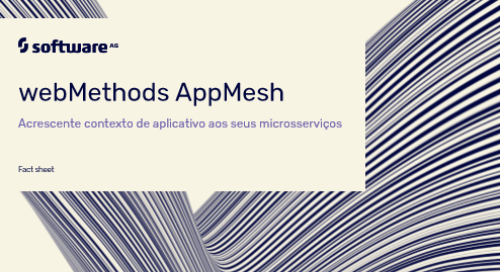 Webmethods AppMesh