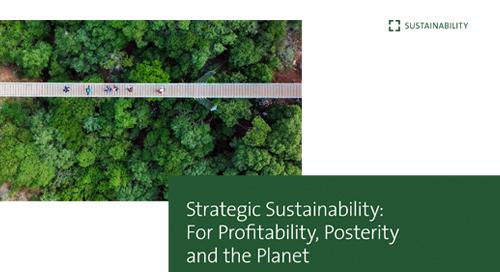 Strategic sustainability: the business case