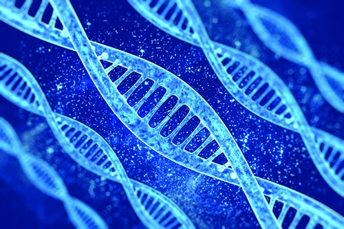 Applying Genomics to Enhance Your Drug Development Journey