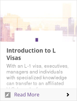 Introduction to L Visas