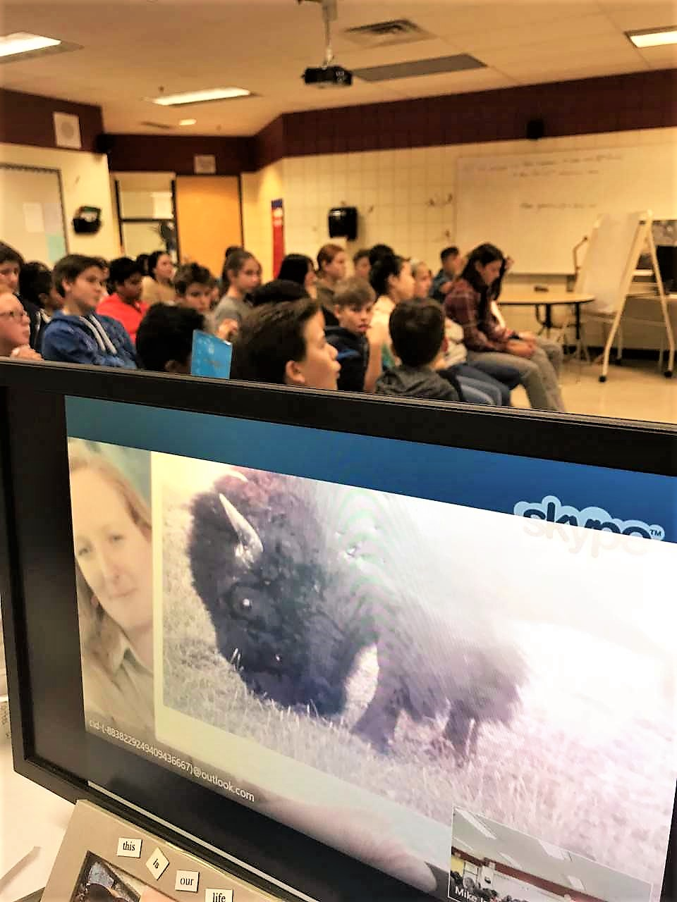 The park warden from Yellowstone discusses buffalo with the class