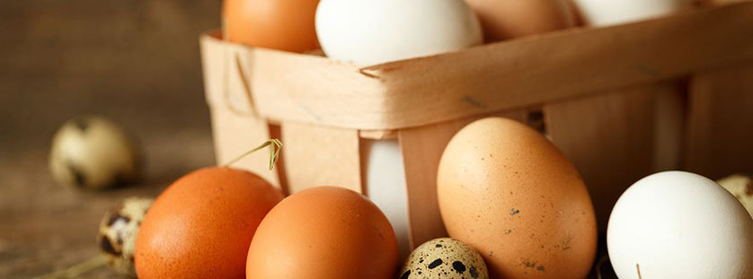 understanding-egg-labels