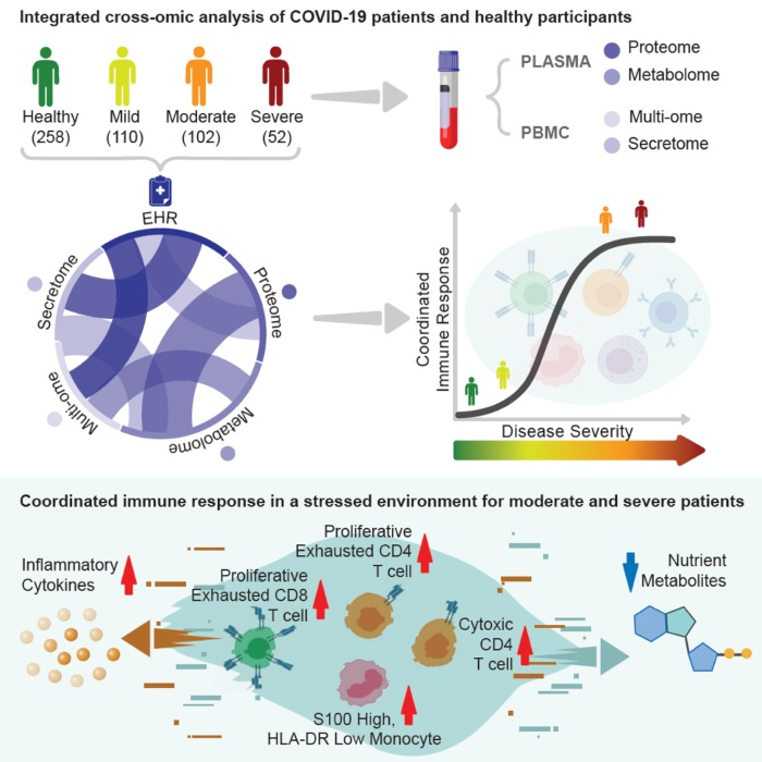 A view of the integrated analysis used in the COVID-19 Immune Response study