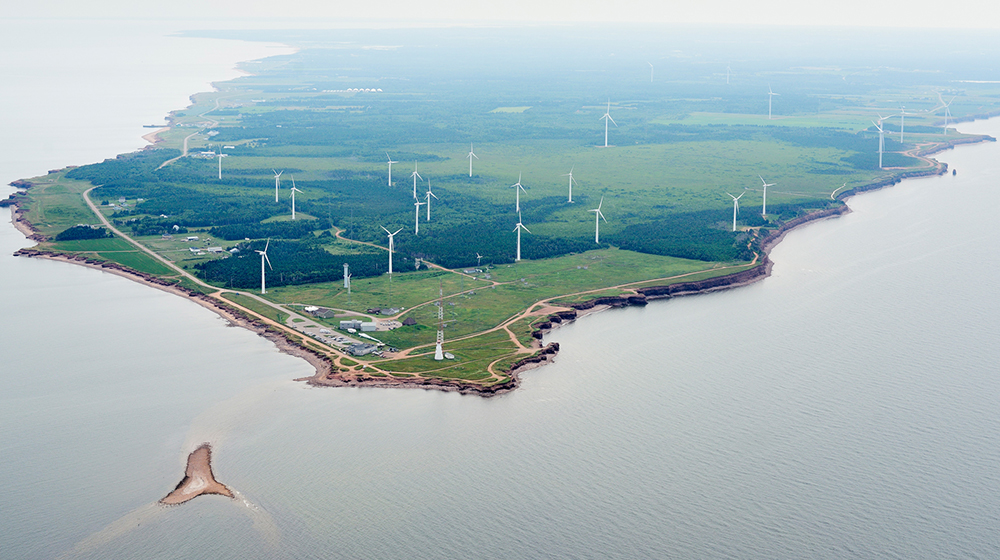 aerial of wind farm on coast