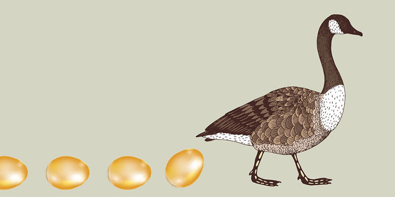 Reusable Software Components: The Golden Goose For Hackers